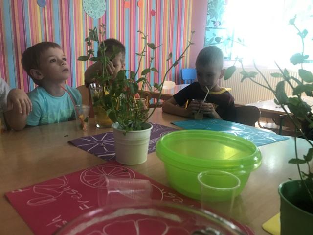 Img8963 Wesoła Kraina Niepubliczne Przedszkole W Kiełczowie